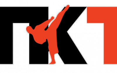 T. Kang Taekwondo has a new website!